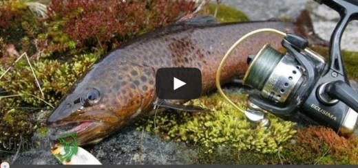 """Видео-передача """"Рыболовные путешествия"""""""