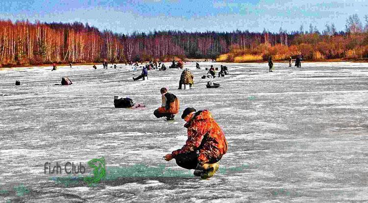 Ловля в заливе по последнему льду