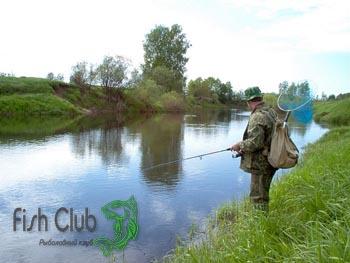 Ловля щуки в ручьях