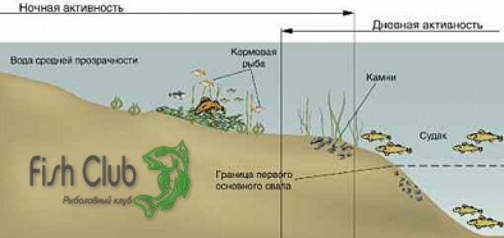 где лучше ловить судака на воткинском водохранилище