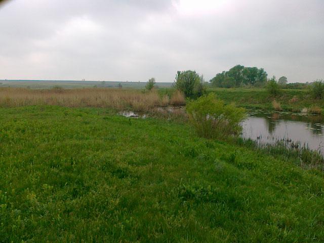 хутор Марьевка, река Березовая