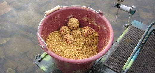Рецепты прикормки для карася