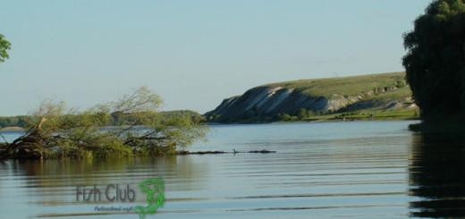 Рыболовный рассказ о ловле донской селедки летом