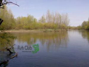 река Калитва. Белокалитвинский район