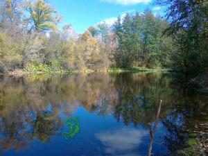 Река Березовая. Рыбалка в Белокалитвинском районе. Щука