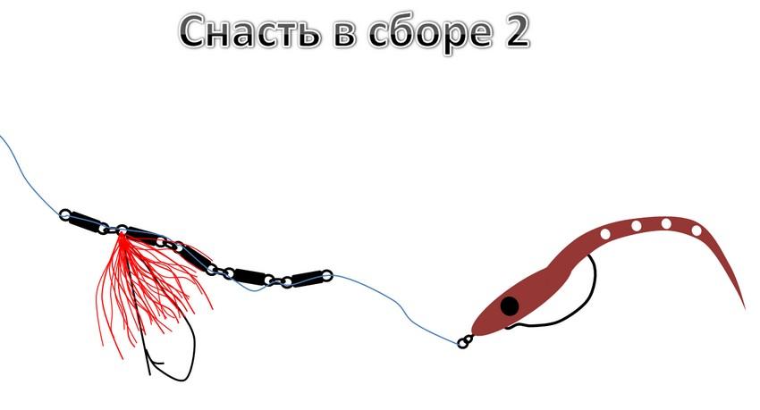shhuku-s-poverxnosti-v-zaroslyax-2