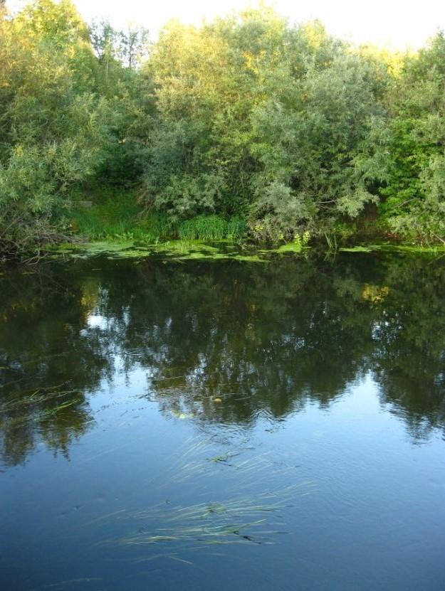vyxod-na-shhuku-na-novoj-reke-2