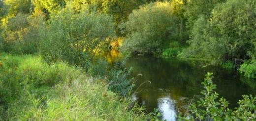vyxod-na-shhuku-na-novoj-reke