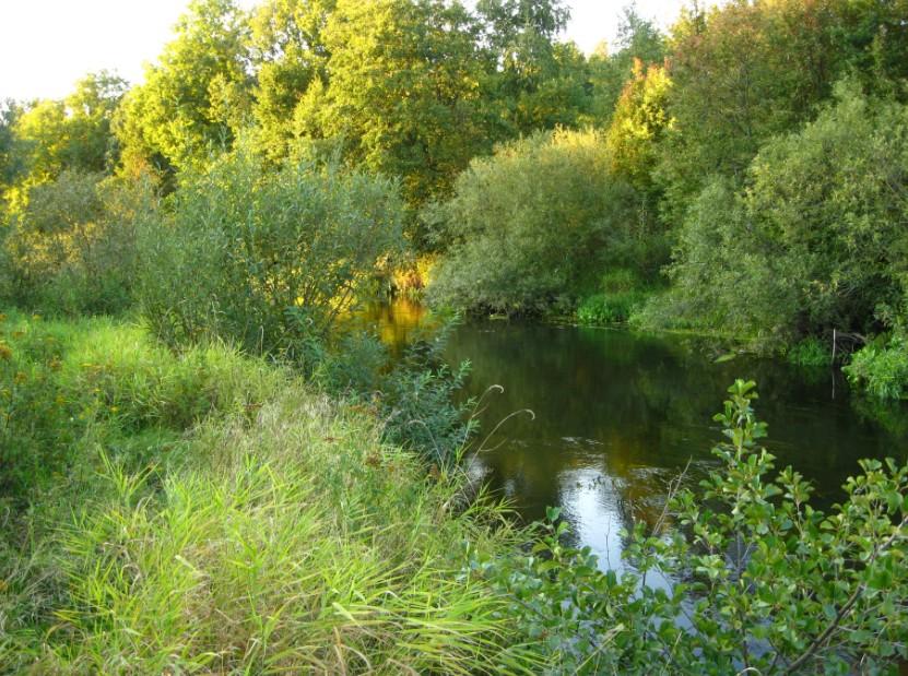 на щуку на новой реке
