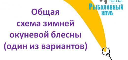 blesna-s-dvumya-igrayushhimi-kryuchkami
