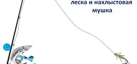 malye-reki-yazya-pojmat-mozhno