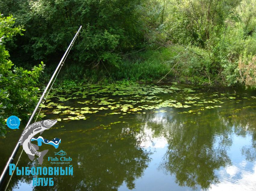 odin-vyxod-na-rybalku-12