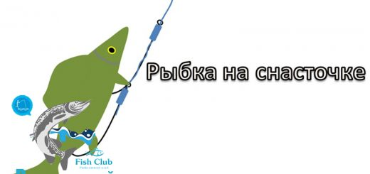 snastochka-iz-dvux-kryuchkov-2
