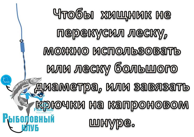 snastochka-iz-dvux-kryuchkov